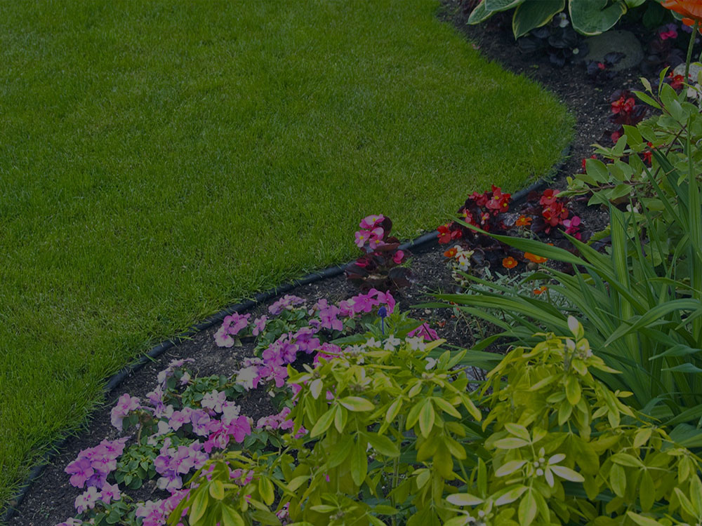 Stratmoor Garden Design