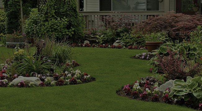 Stratmoor Landscape Design